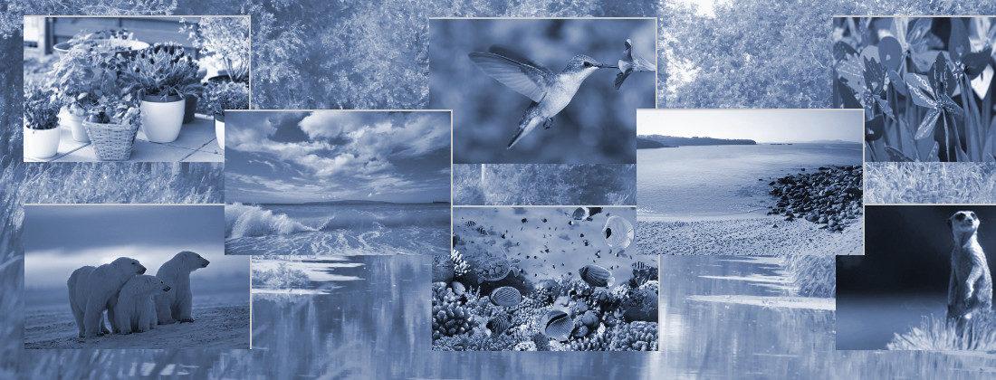aspekty-środowiskowe-ISO 14001